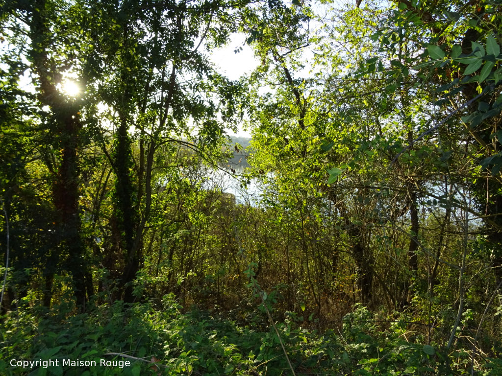 Propriété de caractère à finir de restaurer dominant la Rance sur 3 hectares
