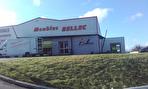 À LOUER local de 600 m² d'activités commerciales/industrielles/artisanales 29000 QUIMPER 1/16