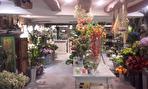 À Louer très joli local commercial secteur piétonnier centre ville historique de Quimper 29000 2/6