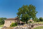 Sur plus de 4 hectares un hameau entier de 4 maisons en pierre restaurées 4/17