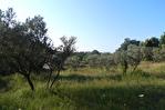 AUPS, beau terrain arboré proche village d'environ 3089 m2. 1/4