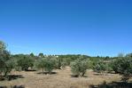 AUPS, beau terrain arboré proche village d'environ 3089 m2. 4/4