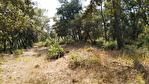 SILLANS LA CASCADE terrain constructible de  5992 m2 2/3