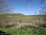 Quercy - Proche Lauzerte - Corps De Ferme Avec Dependance Et Près De 12 Hectares Du Terrain, Endroit Calm 8/18