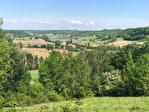 QUERCY - Près de Lauzerte - Ravissante Chateau  avec 5,85 hectares, piscine et dependants rénove 17/18