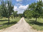 QUERCY - BOURG DE VISA - Manoir en pierre avec 5 chambres, piscine, grange et parc jardins de 1.15 hectares 18/18