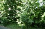 A VENDRE TRES BEAU F5 CAEN ZENITH 6/18
