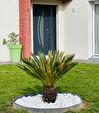 Haut d'IDRON Maison neuve 6 pièces 160 m2 11/12