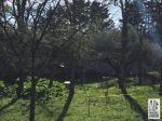 TERRAIN A BATIR CAUMONT SUR DURANCE - 800 m2 2/3
