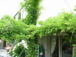 maison ancienne MONTFORT L AMAURY - 7 pièce(s) - 160 m2 5/5