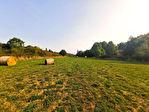 Terrain Montfort L Amaury  6180 m2 3/3