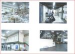 TERRAIN A BATIR AMILLY - 2350 m2 5/9
