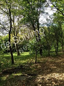 Terrain a vendre 2800 m2  prox. Sisteron