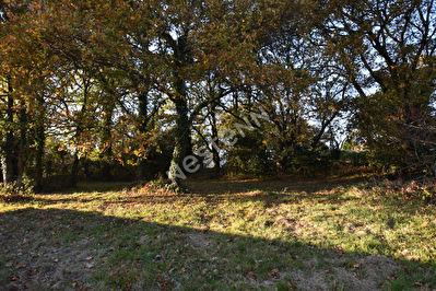 Terrain campagne Elven 900 m2 environ