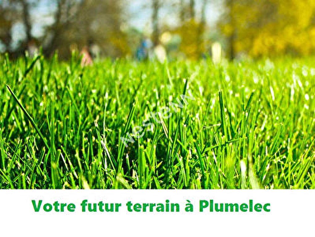 Terrain constructible Plumelec 4688 m2