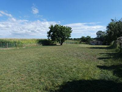 Terrain Peaule 1194 m2