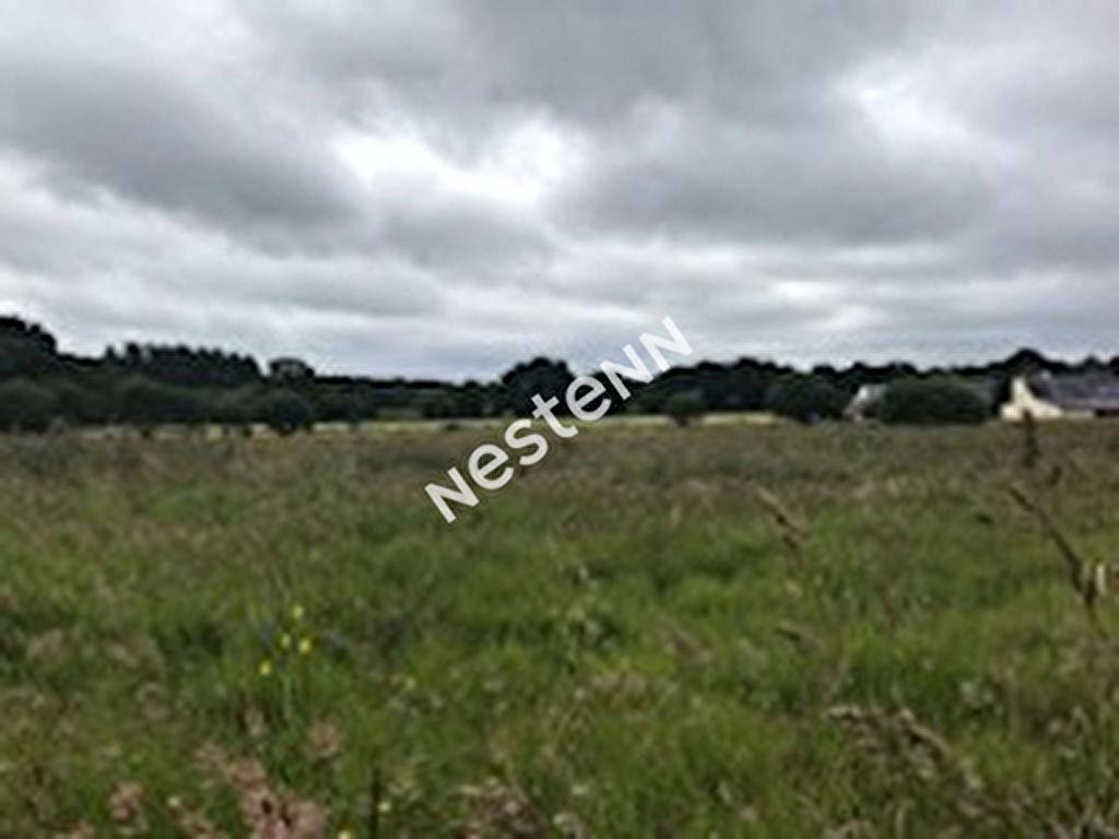 Terrains viabilises Questembert, hameau au calme
