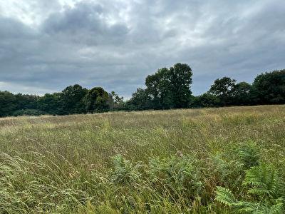 Terrain pour lotisseur, investisseur ou amenageur foncier, 9100 m2 14 lots mini, bourg a pieds