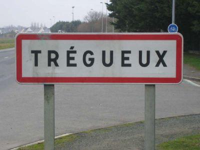 TERRAIN CONSTRUCTIBLE TREGUEUX - 456 m2