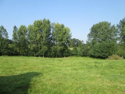 Terrain non constructible Hillion 20000 m2