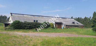 Deux hangars sur 13 000 m2 de terrain a Mauron (56430)