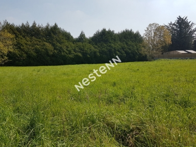Terrain a batir de 568 m2 a Ploermel (56800)