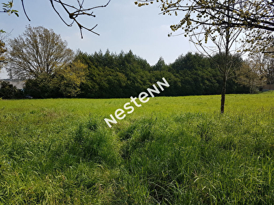 Terrain a batir de 1 004 m2 a Ploermel (56800)