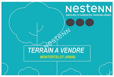 Terrain a batir de 770 m2 a Montertelot (56800)