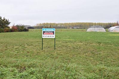 Terrain a vendre a Beaufort En Anjou 1200 m2