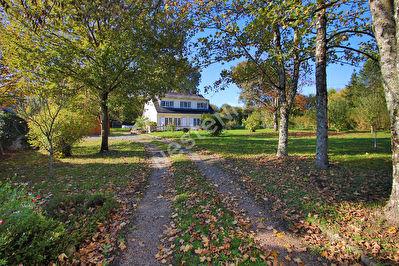 Maison a Soucelles, grand parc de 3900 m2