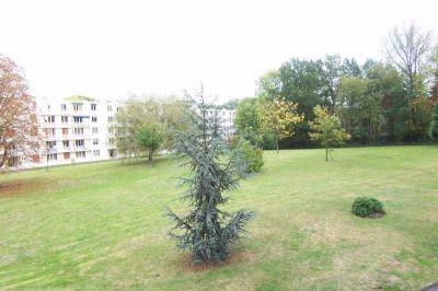 Appartement VERSAILLES - 5 pieces - 80,52 m2