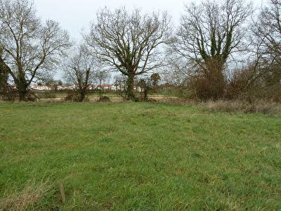 Terrain 615 m2 viabilise a Challans proche centre