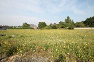 Terrain Saint Barthelemy D Anjou 729 m2