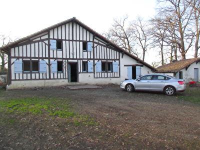Maison traditionnelle Souprosse  3 chambres 101 m2  terrain 2700