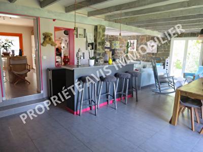 Grande maison Atypique St Senoux 6 pieces 160 m2 - 2760m2 de terrain