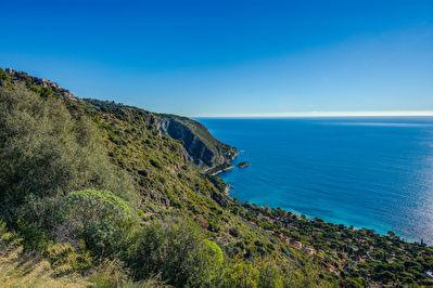 Offre rare terrain agricole de 3.2 ha avec villa de 140m2  a 5min de Monaco