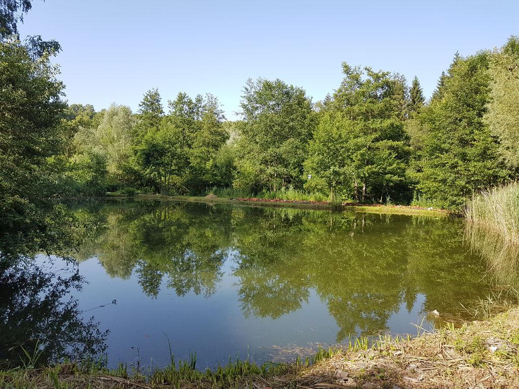 Terrain avec étang dans un endroit calme proche soissons