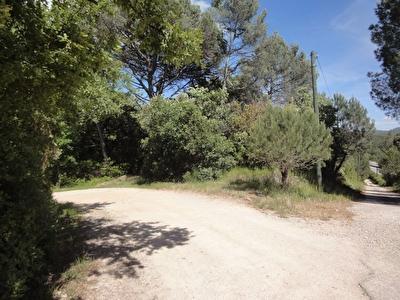 Terrain non constructible en nature de bois - Brignoles - 3510 m2