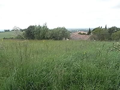 terrain constructible au sud de Muret