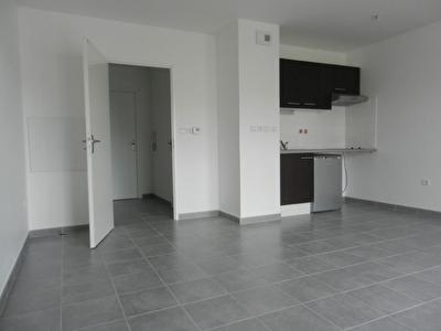 Appartement Blagnac Grand T1 34 m2 510 euros cc Parking Sous Sol