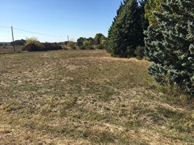 Terrain agricole 1ha avec Maisonnette T2 40m2