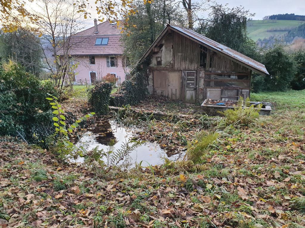 Maison atypique proche Aiguebelette