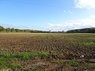 Exclusivite a 10 min Rochefort : Terrain Cabariot hors lotissement  belle surface de 894 m2