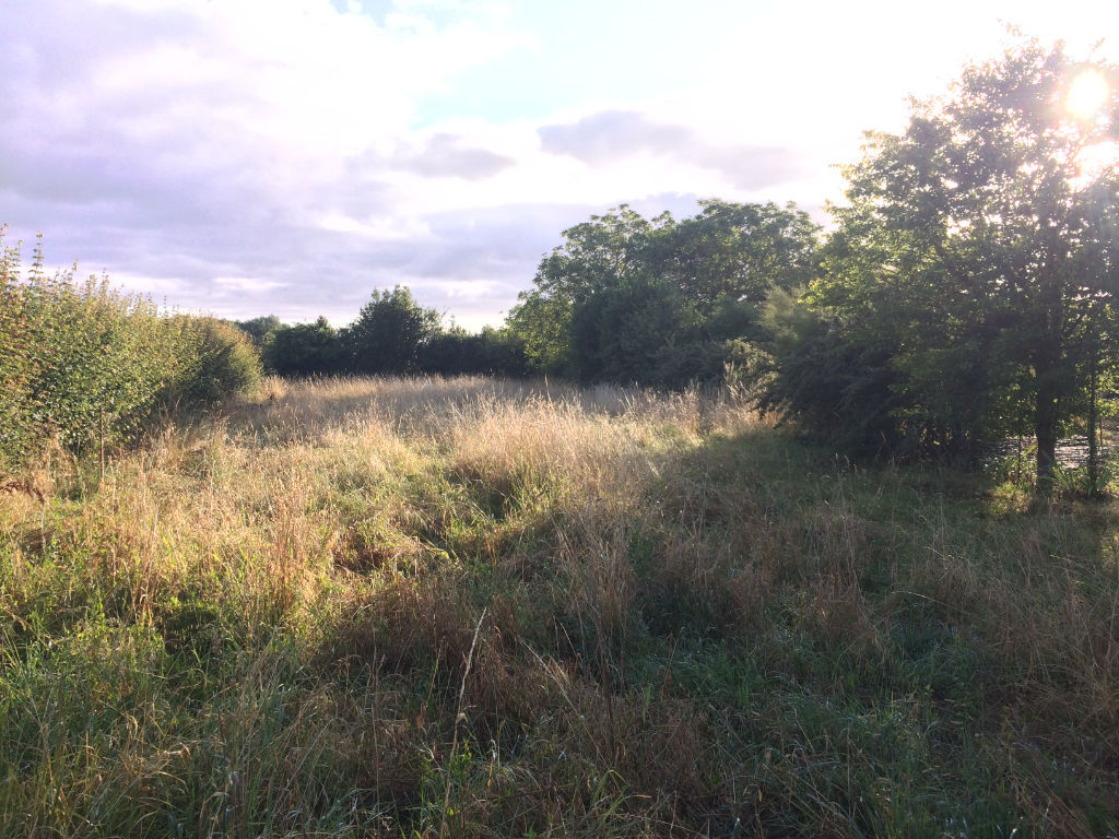 10 min Rochefort  : Saint Hippolyte : Terrain à bâtir 1550 m²