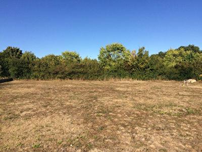 10 MIN ROCHEFORT : ST HIPPOLYTE : Beau terrain a batir de 1050m2 hors lotissement