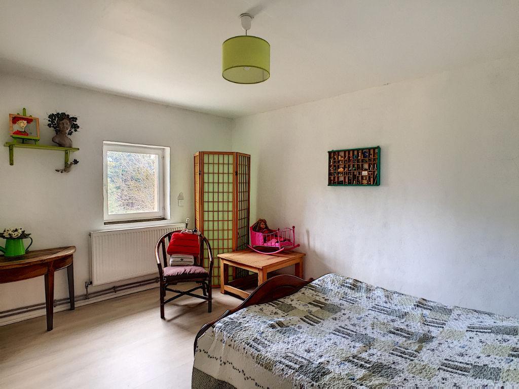 ALIXAN- CORPS DE FERME 8 pièce(s) 375 m² AVEC DÉPENDANCES SUR PARCELLE 7700 m²