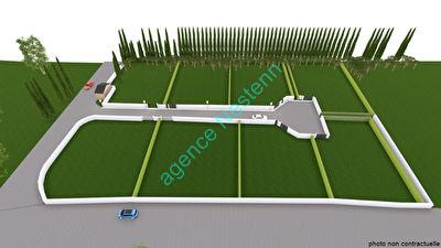 Terrain Lucciana  599 m2