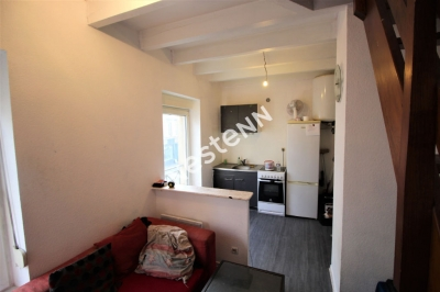 Appartement Montigny Les Metz F1 duplex investisseur