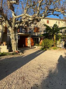 L'Ile de la Barthelasse, Appartement T2  Jardin AVIGNON
