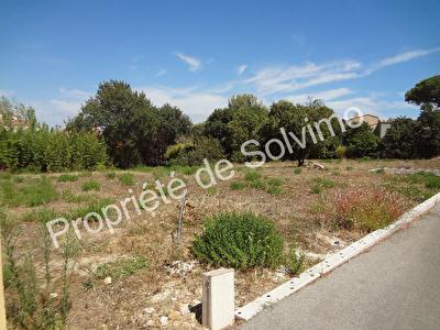 Terrain Le Pradet 1000 m2